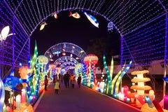 Neonlichter mit unterschiedlichem der Formen-D Laternenfestival zuerst in Nanchang Stockbilder