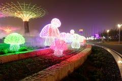 Neonlichter mit verschiedenen Formen Lizenzfreie Stockbilder
