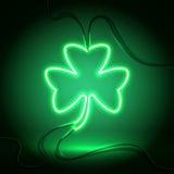Neonmörker - grön växt av släktet Trifolium Royaltyfria Bilder