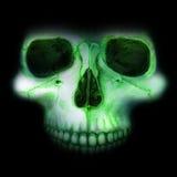 Neonowa czaszka w ciemności Fotografia Royalty Free
