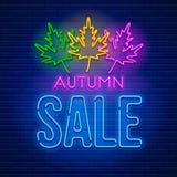 Neonowego znaka jesieni sprzedaż Obraz Stock