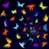 Neonowy motyl Zdjęcie Stock