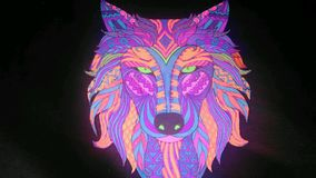 Neonowy wilk fotografia royalty free