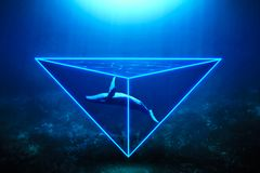 Neonwalvis stock foto