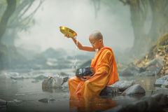 Neophyte. In the river,thailand Stock Images