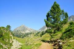 Neouvielle全国自然保护,法国比利牛斯 库存图片