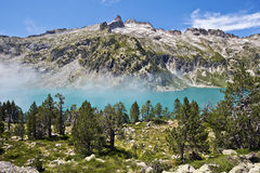 Neouvielle peak and Aubert lake seen from mountain pin forest Stock Photos