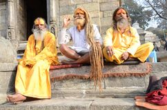 Nepal 2011, sadhus at a temple Stock Photography