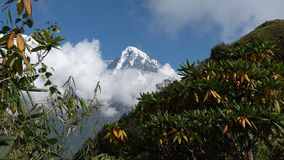 Nepal, Annapurna. Mardi Himal trek. Trekking arround mount Annapurna in Nepal royalty free stock photos