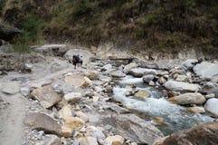 Nepal Annapurna som trekking vid floden Arkivbild
