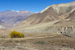 Nepal arid mountains Stock Photos