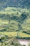 Nepal. Campos de la terraza. Imagen de archivo