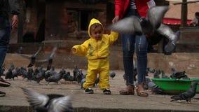 Nepal - 11 de novembro de 2018: jovem mulher com caminhada da criança no quadrado de Durbar em Kathmandu entre pombos video estoque