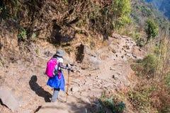 Nepal - 28 December 2016 :: Hiking to Himalaya mountain in Nepal Royalty Free Stock Photography