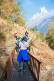 Nepal - 28 December 2016 :: Hiking to Himalaya mountain in Nepal Stock Photos