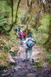 Nepal - 29 December 2016 :: Hiking to Himalaya mountain in Nepal Stock Photography