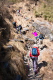 Nepal - 29 December 2016:: Wandeling aan de berg van Himalayagebergte in Nepal Stock Afbeeldingen