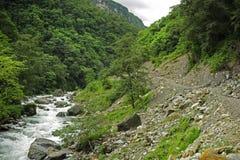 Nepal-Dschungel Stockfoto