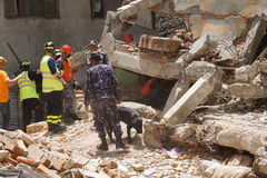 Nepal Earthquake 2015. MP061: Nepali rescue team look out for trapped people and dead bodies at a collapsed building during the April 25, 2015 earthquake in Stock Photos