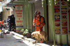 Nepal Earthquake 2015. MP063: A Polish rescue personnel along with his sniffer dog takes rest as he looks out for trapped people and dead bodies at a collapsed Royalty Free Stock Photos