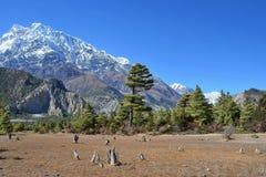 Nepal, el Himalaya en día soleado claro fotografía de archivo libre de regalías