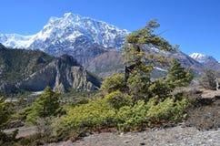 Nepal, el Himalaya en día soleado claro imagen de archivo libre de regalías