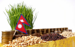 Nepal flag waving with stack of money coins and piles of wheat Stock Image