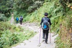 Nepal - 24 2016 Grudzień: Wycieczkować himalaje góra w Nepal Zdjęcia Stock