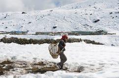 Nepal, Himalaya, Octoder, 19, 2013 El emigrar al lago Gokio mujer alta en las montañas fotografía de archivo libre de regalías
