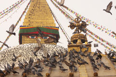 Nepal Kathmandu  Boudhanath Stupa and Flying Pigeons Royalty Free Stock Image