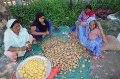 NEPAL-LIVING-TEMPORARY-SHELTER Fotografie Stock