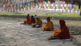 NEPAL, LUMBINI - 28 FEBRUARY 2016: Monks meditate under the Buddha tree. Pilgrims on the square near Maya Devi Temple stock video