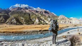 Nepal - Manag, menino e os iaques imagens de stock