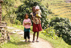 Nepal Mountain Children stock image