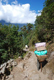 Nepal porters in Himalayas Stock Images