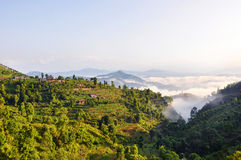 Nepal's natural beauty Stock Photography