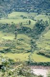 1975. Nepal. Terrace fields. Stock Image