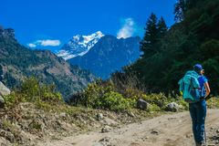 Nepal - Trekkings-Mädchen, das Manaslu bewundert stockfoto