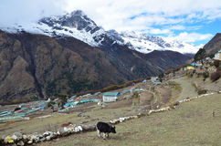 Nepal, the village of Phortse Tenga in the Himalayas, 3600 meters above sea level Royalty Free Stock Photography