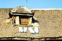 Nepal-Wäscherei in Patan Stockfotografie