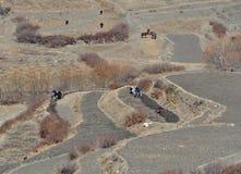 Nepalese farmers plowing  field. Annapurna region, Himalayas,. In Nepal on November, 2014 Stock Image