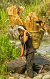 Nepalese girl carry big basket with wood. Nepalese little girl carry big basket with wood logs in the village. Children, small kid outside in Nepal. Children Stock Images