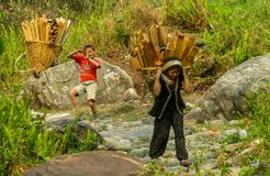 Nepalese girl carry big basket with wood. Nepalese little girl carry big basket with wood logs in the village. Children, small kid outside in Nepal. Children Royalty Free Stock Photo