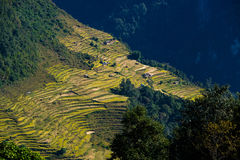 Nepalese landscape Royalty Free Stock Photo