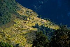 Nepalese landscape Royalty Free Stock Photo