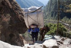 Nepalese porter carrying a heavy load, Nepal Himalayas royalty free stock images