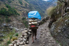 Nepalese Sherpa Hiking Mountain Trail Village .Young Man Climbing Loaded Bags Track Traveler Beautiful Noth Asia.Summer. Nepalese Sherpa Hiking Mountain Trail Royalty Free Stock Images