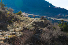 Nepalese Sherpa Hiking Mountain Trail Village .Young Man Climbing Loaded Bags Track Traveler Beautiful Noth Asia.Summer. Nepalese Sherpa Hiking Mountain Trail Royalty Free Stock Photos
