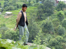 Nepalese veehoeder stock afbeelding