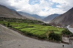 Nepalese village of Kagbeni, with orchards, is located in the valley of the Himalayas. Trekking to the Upper Mustang. Nepal Stock Photography